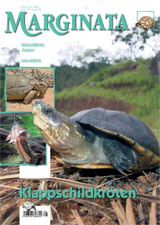 MARGINATA 66: Schlammschildkröten