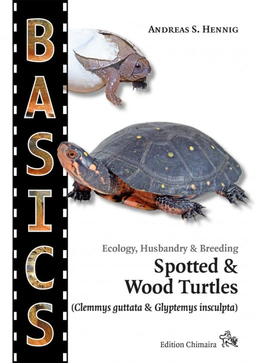 Spotted & Wood Turtles (Clemmys guttata & Glyptemys insculpta). Andreas S. Hennig