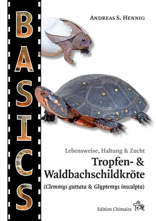Tropfen- und Waldbachschildkröte (Clemmys guttata & Glyptemys insculpta). Andreas S. Hennig